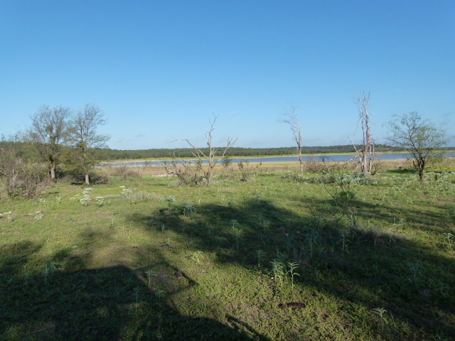 Address not available!, ,Farm/Ranch (Sold),Sold,1154