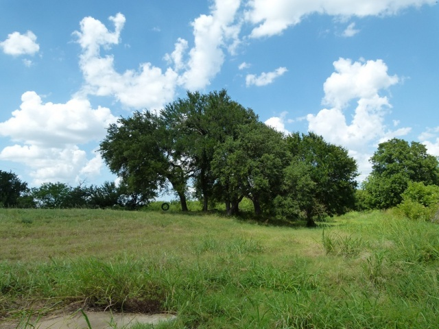 8900 COUNTY ROAD 105, BROWNWOOD, Texas 76801, ,River/Lakefront (Sold),Sold,COUNTY ROAD 105,1177