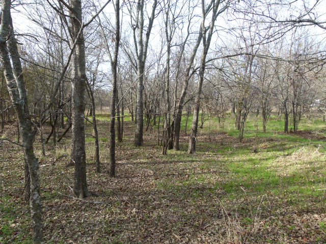 201 VALLEY RD, EARLY, Texas 76802, ,Vacant Lots (Sold),Sold,VALLEY RD,1184