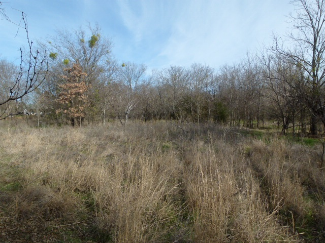 201 VALLEY RD, EARLY, Texas 76802, ,Vacant Lots,For sale,VALLEY RD,1184