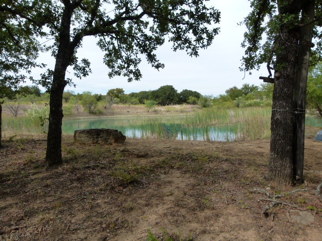 141 ROBERTS LN, EARLY, Texas 76802, ,Farm/Ranch,For sale,ROBERTS LN,1185