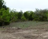County Road 352, Blanket, Texas 76432, ,Farm/Ranch (Sold),For sale,1191
