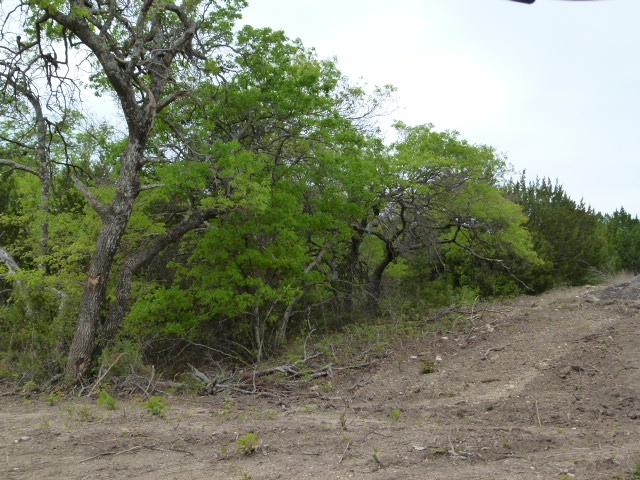 County Road 352, Blanket, Texas 76432, ,Farm/Ranch,For sale,1191
