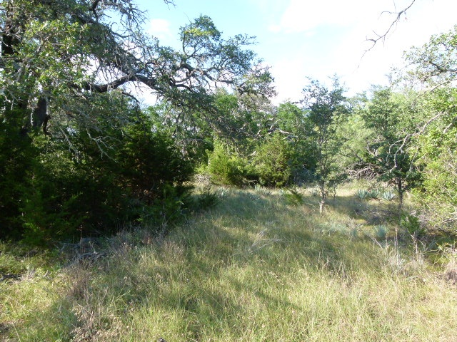 151 FM 574, GOLDTHWAITE, Texas 76844, ,Farm/Ranch (Sold),For sale,FM 574,1194
