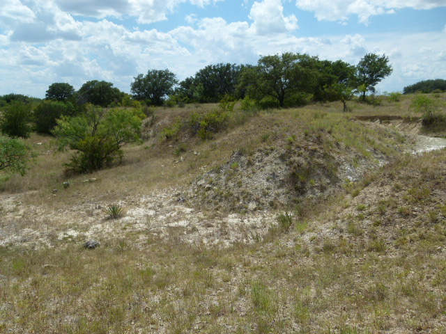 TBD COUNTY ROAD 292, EARLY, Texas 76802, ,Farm/Ranch,For sale,COUNTY ROAD 292,1198