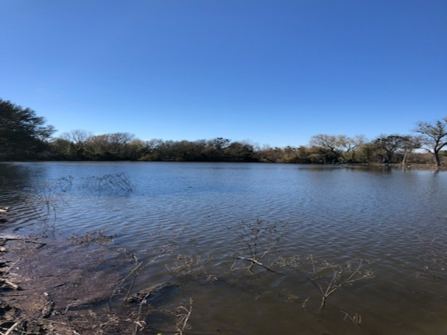 2645 COUNTY ROAD 294, EARLY, Texas 76802, ,Farm/Ranch (Sold),Sold,COUNTY ROAD 294,1202
