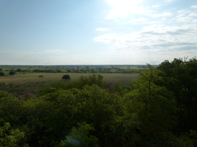 COUNTY ROAD 149, BROWNWOOD, Texas 76801, ,Farm/Ranch (Sold),Sold,COUNTY ROAD 149,1204
